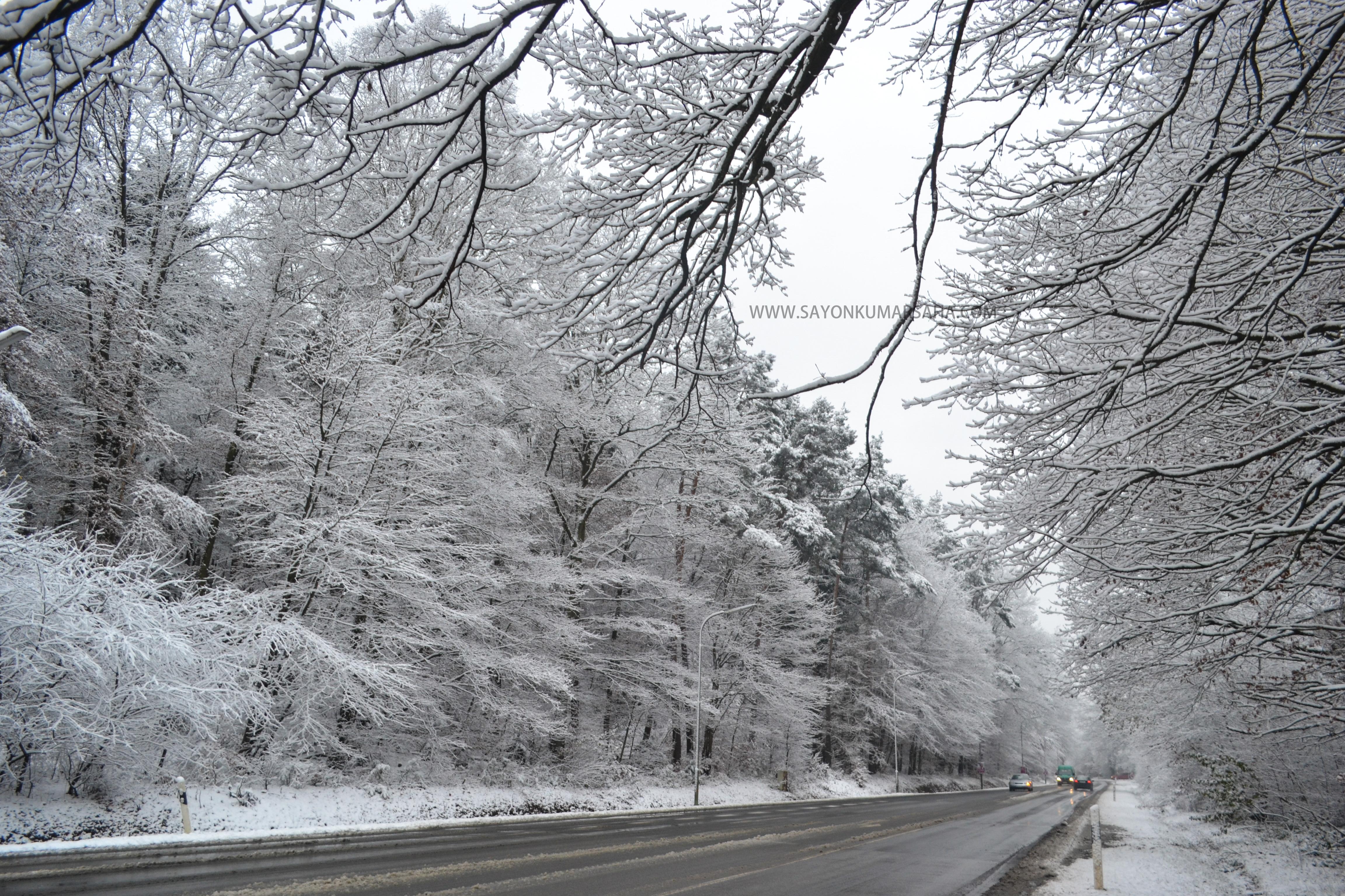 Snow White Kaiserslautern